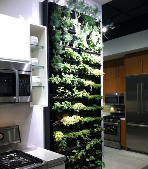 Plant wall1