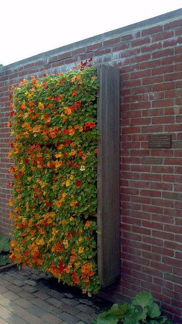 Plantwall2