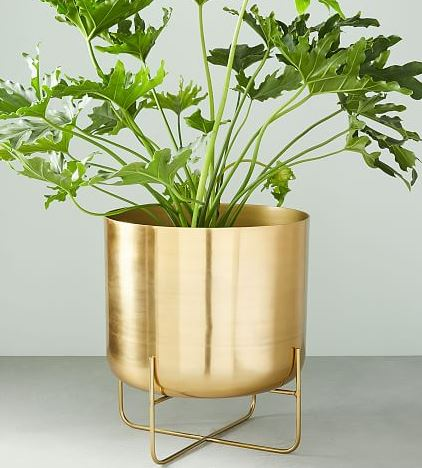 Gold Planter 2